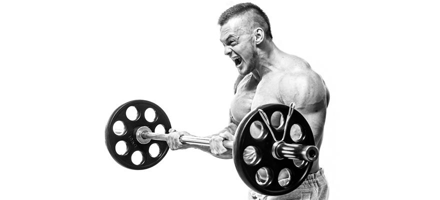 the basics of the arnold workout
