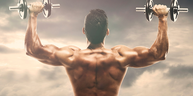 steroid free bodybuilding